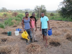 Watering the field.